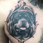 tattoo chosen art studio black and grey portrait rotweiler arizona glendale